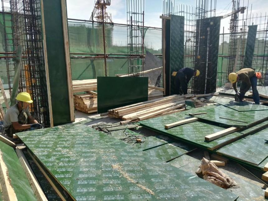 耐用塑面环保建筑模板